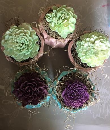 ecflowerboutique_succulents